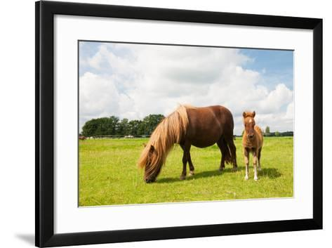 Pony and Young Foal in the Meadows-Ivonne Wierink-Framed Art Print