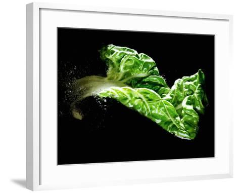 A Chard Leaf in Oil--Framed Art Print