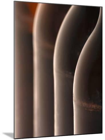 Four Beer Bottles-Chris Sch?fer-Mounted Photographic Print