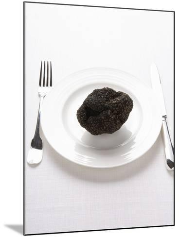 A Truffle on a White Plate--Mounted Photographic Print