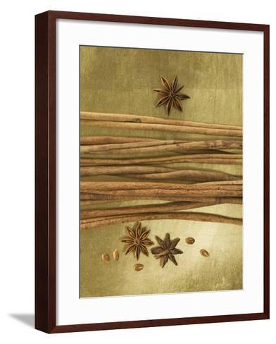 Christmas Spices (Cinnamon Sticks and Star Anise)-Achim Sass-Framed Art Print