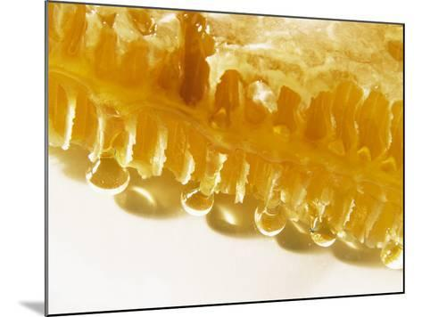Close-Up of a Honeycomb-Dieter Heinemann-Mounted Photographic Print