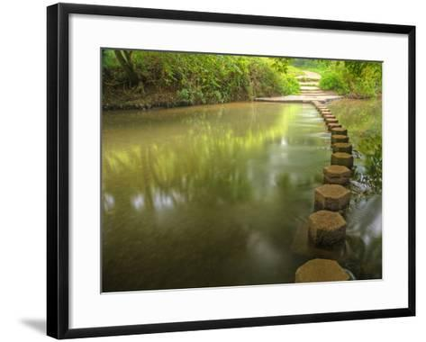 Beautiful Forest Scene of Enchanted Stream Flowing through Lush-Veneratio-Framed Art Print