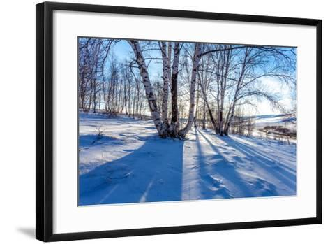 The Snow Covered Birch Forest-06photo-Framed Art Print