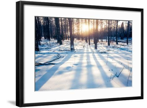 Winter Forest in China-06photo-Framed Art Print