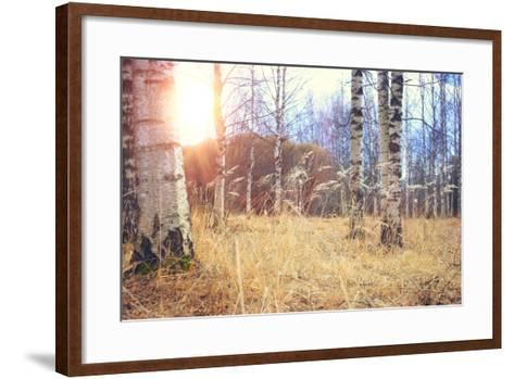 Spring Birch Forest- kichigin19-Framed Art Print