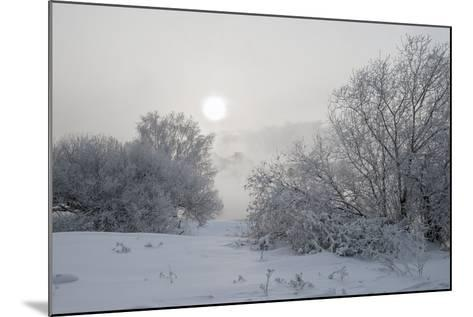 Frost- afrutin-Mounted Photographic Print