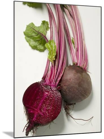 Beetroot with Leaves, One Halved, Close-Up--Mounted Photographic Print