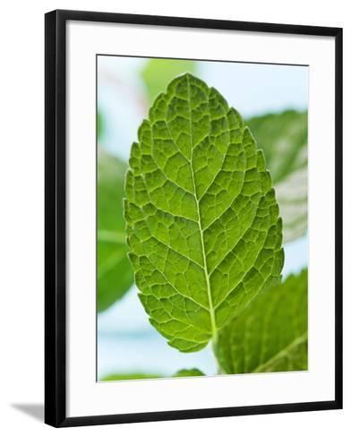 Mint--Framed Art Print