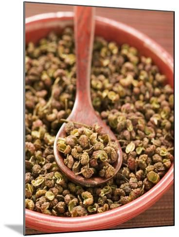 Szechuan Pepper in Bowl with Spoon--Mounted Photographic Print