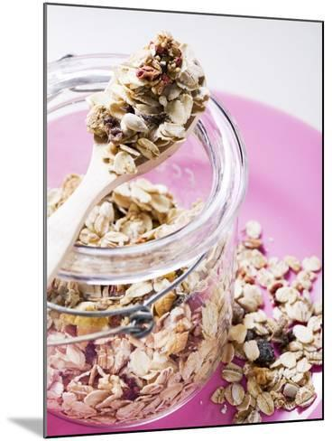 Muesli with Dried Fruit in Preserving Jar--Mounted Photographic Print