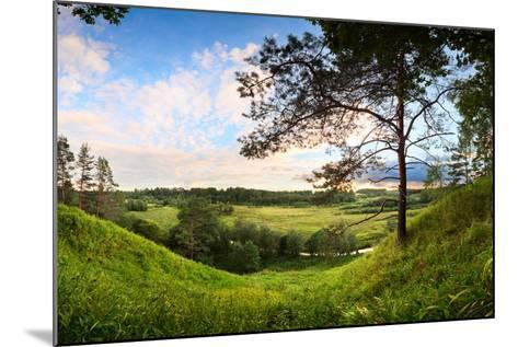 Landscape Panorama of Valley with a Lonely Pine-Aleksandr Matveev-Mounted Photographic Print