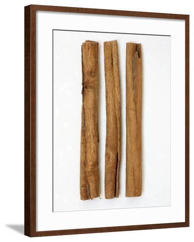 Three Cinnamon Sticks-Frank Tschakert-Framed Art Print