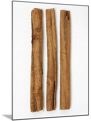 Three Cinnamon Sticks-Frank Tschakert-Mounted Photographic Print