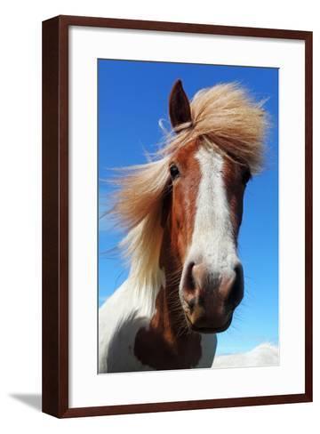 Horse Head in Iceland-TTstudio-Framed Art Print