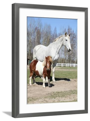 Big Horse with Pony Friend-Zuzule-Framed Art Print