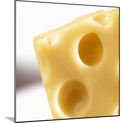 Emmental Cheese--Mounted Photographic Print
