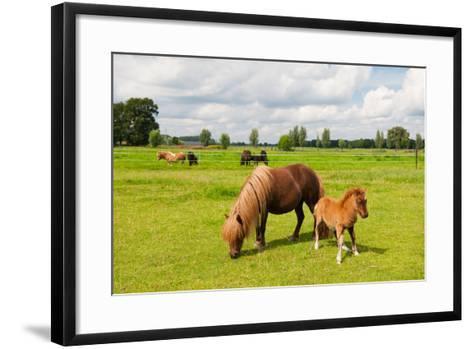 Pony in the Meadows-Ivonne Wierink-Framed Art Print