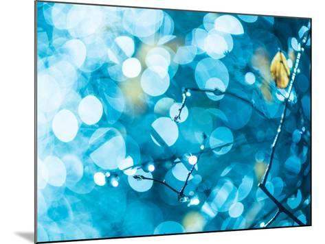Rainy Flora in Bright Blue Light-Alexey Rumyantsev-Mounted Photographic Print