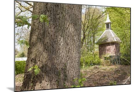 Pigeon House in Forest Scenery-YellowPaul-Mounted Photographic Print