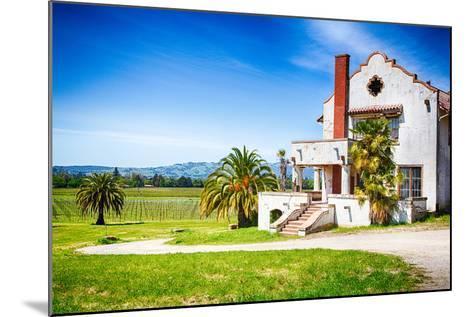 Mission Vineyard-garytog-Mounted Photographic Print