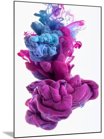 Color Dop-sanjanjam-Mounted Photographic Print