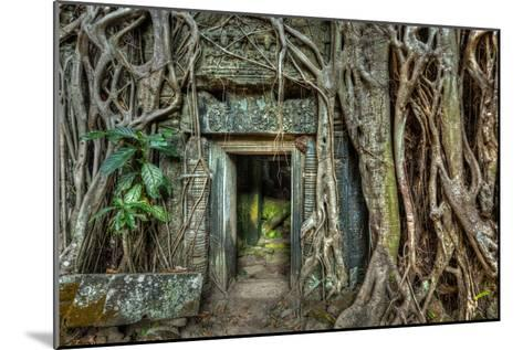 Ancient Stone Door and Tree Roots, Ta Prohm Temple, Angkor, Camb-f9photos-Mounted Photographic Print