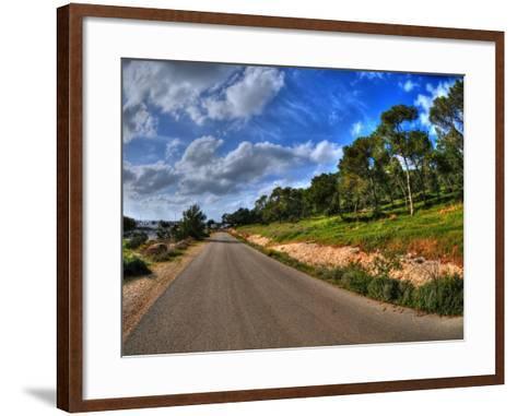 Road in a Field in Hof Hacarmel near Haifa, Israel- aharond-Framed Art Print