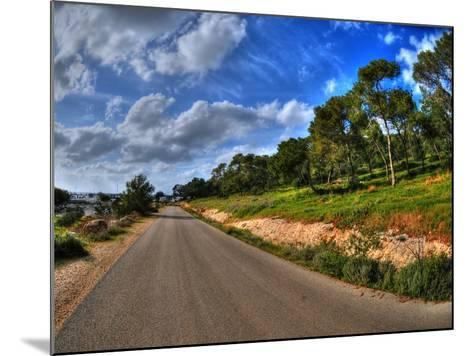 Road in a Field in Hof Hacarmel near Haifa, Israel- aharond-Mounted Photographic Print