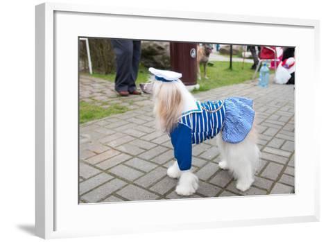Chinese Crested Dog-rook76-Framed Art Print