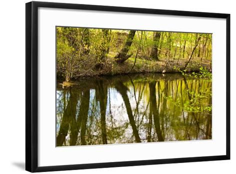 Spring Landscape-Nataliya Dvukhimenna-Framed Art Print