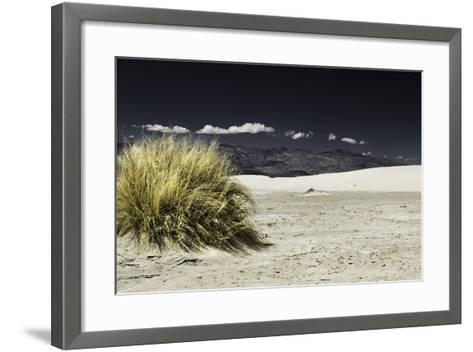 Bush Death Valley- RJPhotography-Framed Art Print