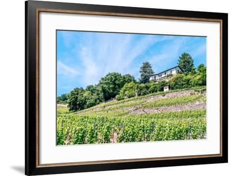 The UNESCO World Heritage Site of the Lavaux Vineyards near Lausanne in Switzerland.- albinhillert-Framed Art Print