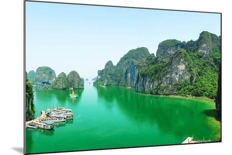 Halong Bay in Vietnam. Unesco World Heritage Site.-cristaltran-Mounted Photographic Print