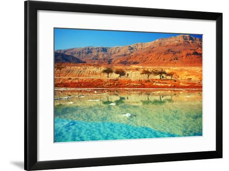Dead Sea Salt Shore-vvvita-Framed Art Print