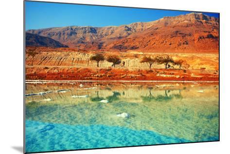 Dead Sea Salt Shore-vvvita-Mounted Photographic Print