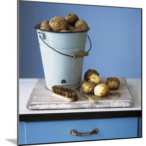 Organic Potatoes in Bucket and on Chopping Board; Brush; Knife-Michael Paul-Mounted Photographic Print