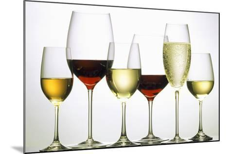 Wines and Champagne-Eising Studio - Food Photo and Video-Mounted Photographic Print