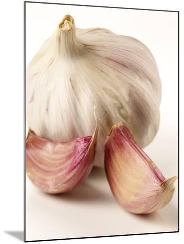 Garlic and Garlic Cloves- Joff Lee Studios-Mounted Photographic Print