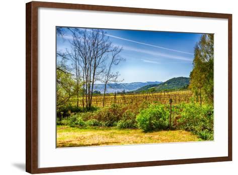 California Vineyards-garytog-Framed Art Print