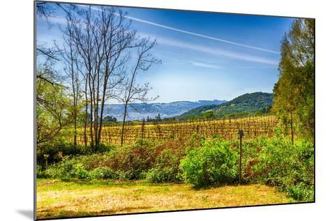 California Vineyards-garytog-Mounted Photographic Print