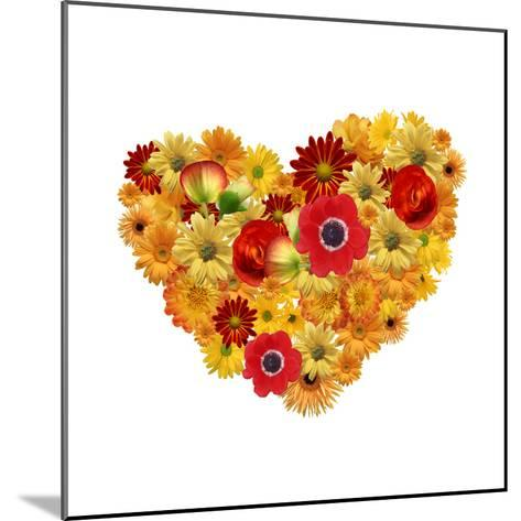 Heart. Chamomile Flowers Background-Anna Ismagilova-Mounted Photographic Print