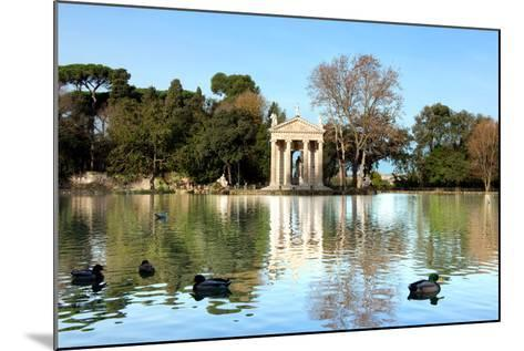 Villa Borghese Lake in Rome-stefano pellicciari-Mounted Photographic Print