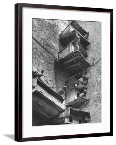 Boxes for Pigeons-Luciano Ferri-Framed Art Print