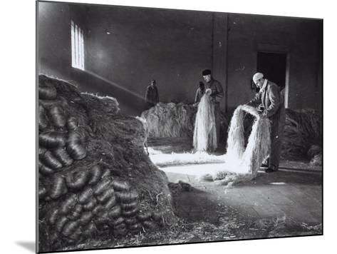 Inside a Factory, a Few Workers Arrange the Raw Hemp Fibers in Bunches-A^ Villani-Mounted Photographic Print