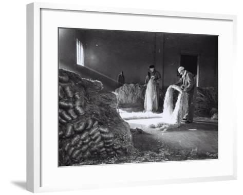Inside a Factory, a Few Workers Arrange the Raw Hemp Fibers in Bunches-A^ Villani-Framed Art Print