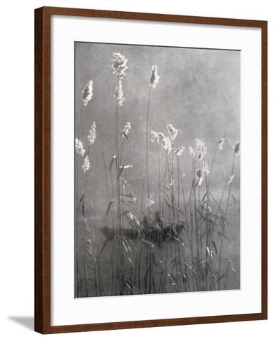 Wild Flowers Growing on Te Banks of a Pond--Framed Art Print