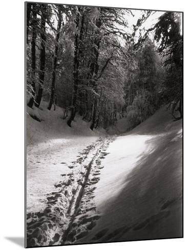 Silence and Mystery--Mounted Photographic Print
