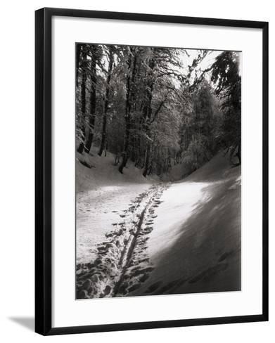 Silence and Mystery--Framed Art Print