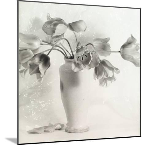 Vase with Tulips-Vincenzo Balocchi-Mounted Photographic Print